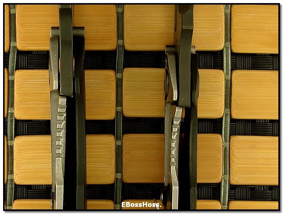 Strider Starlingear Laser-etched DDC Customs