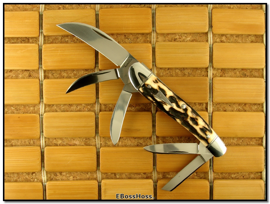 Joel Chamblin 5-Blade Stag Rodgers