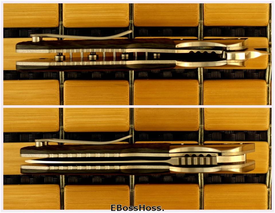 Allen Elishewitz / Liong Mah Force One Flipper