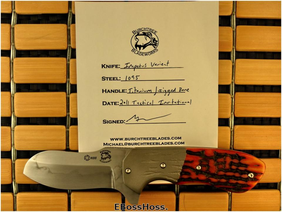 Michael Burch Deluxe Impetus Flipper Variant