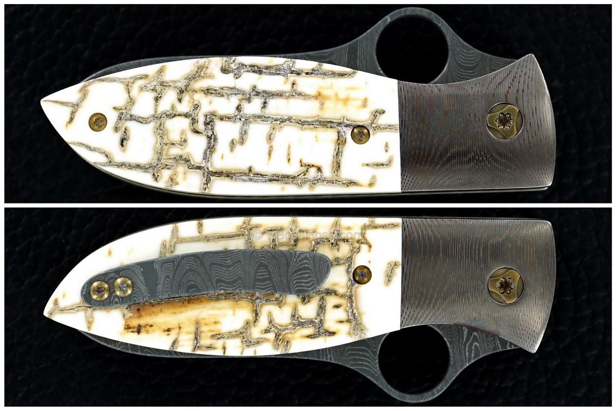 Peter Carey Custom Deluxe Firefly Prototype