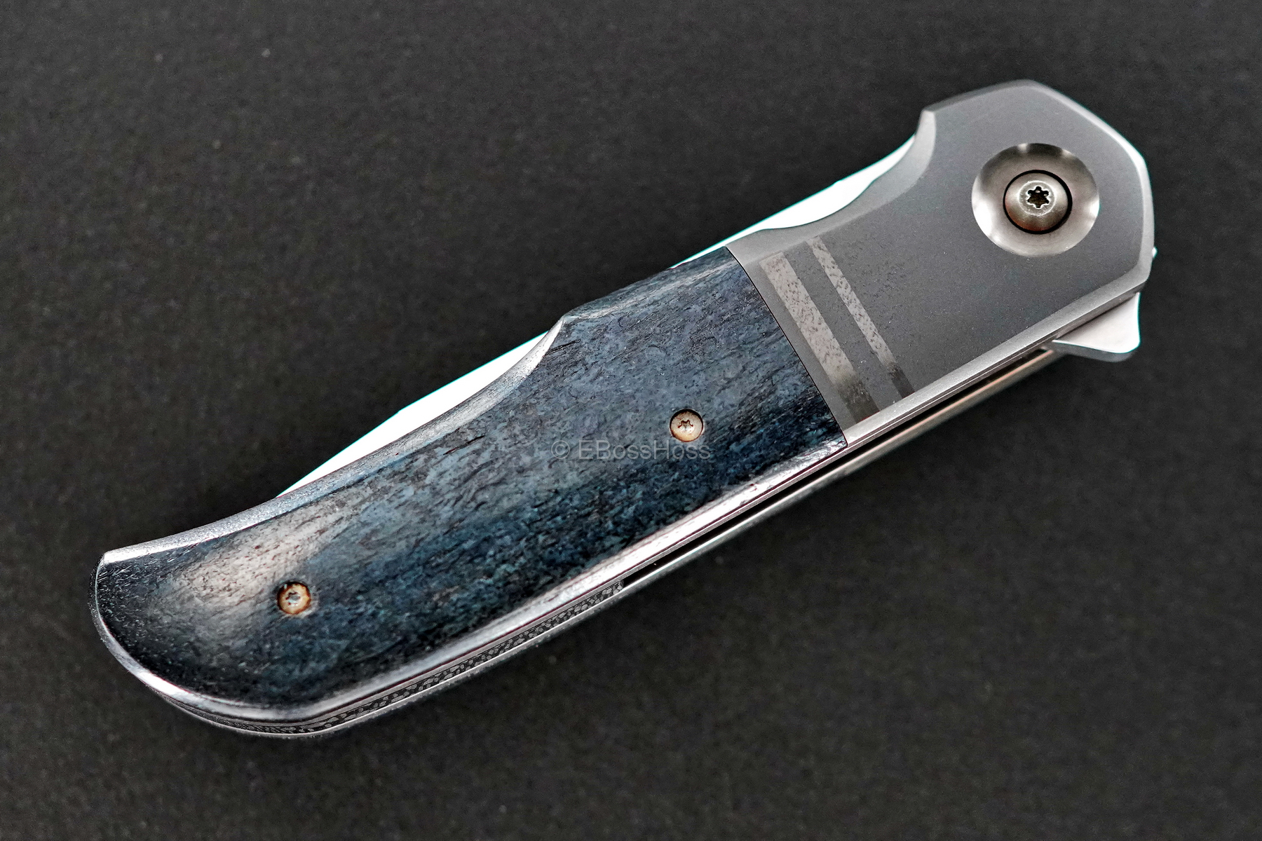 Bob Terzoula Custom Very Deluxe Eagle Rock Flipper Variant